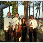 Viol consort at the beach